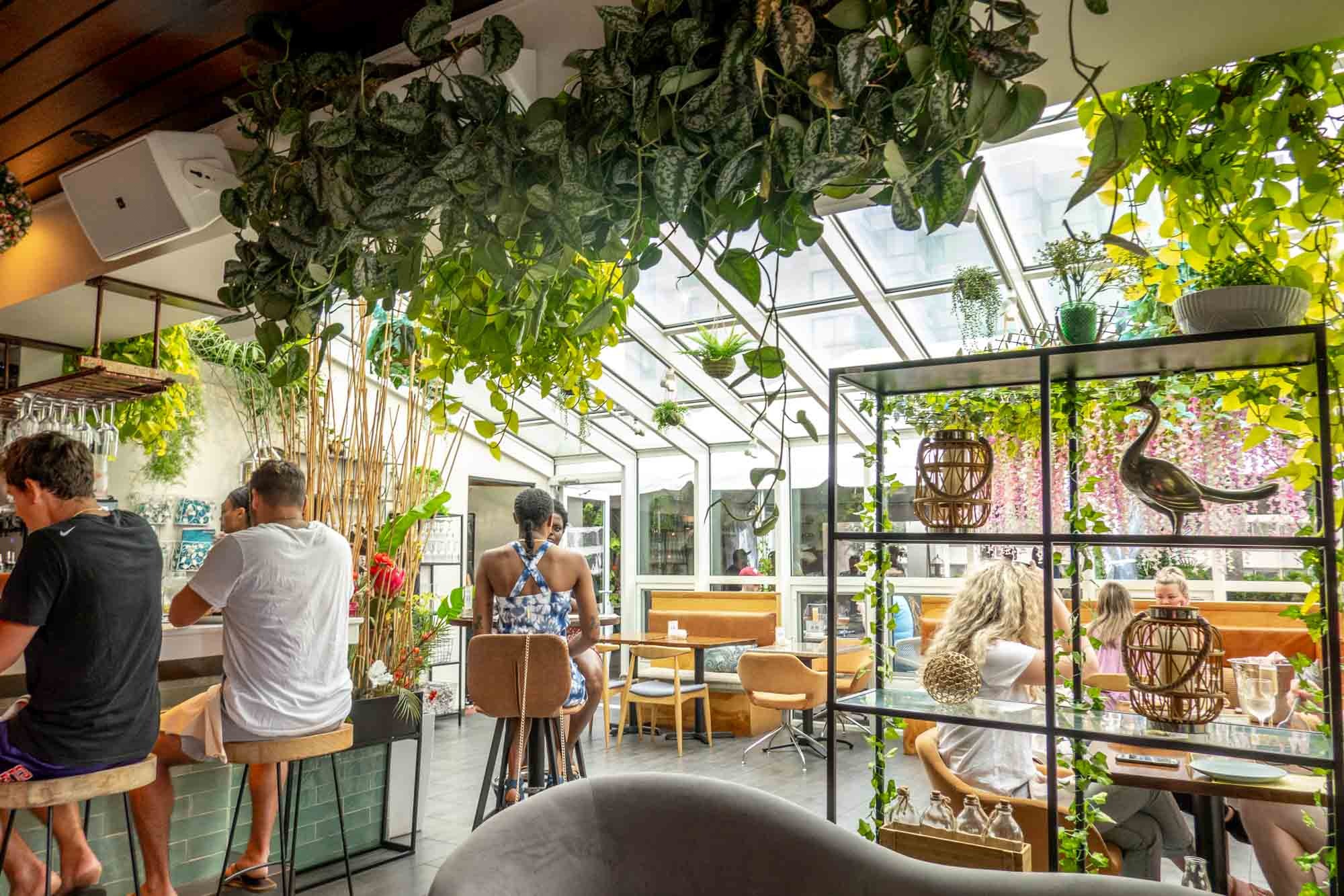 People seated at a bar and tables inside a room with a glass roof decorated with plants