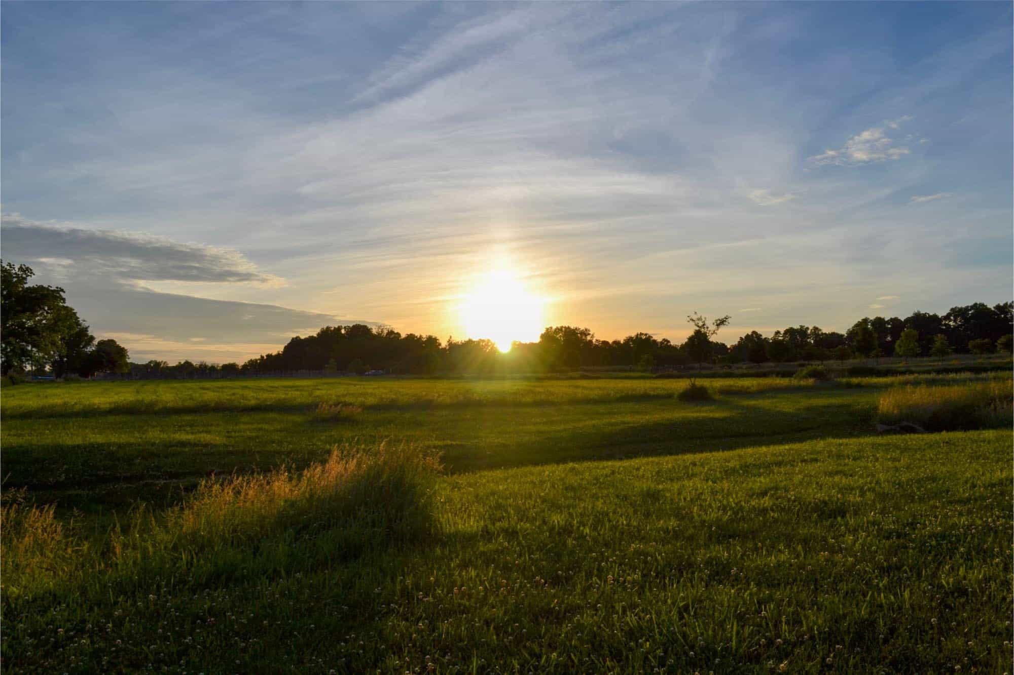 Sunset over a park