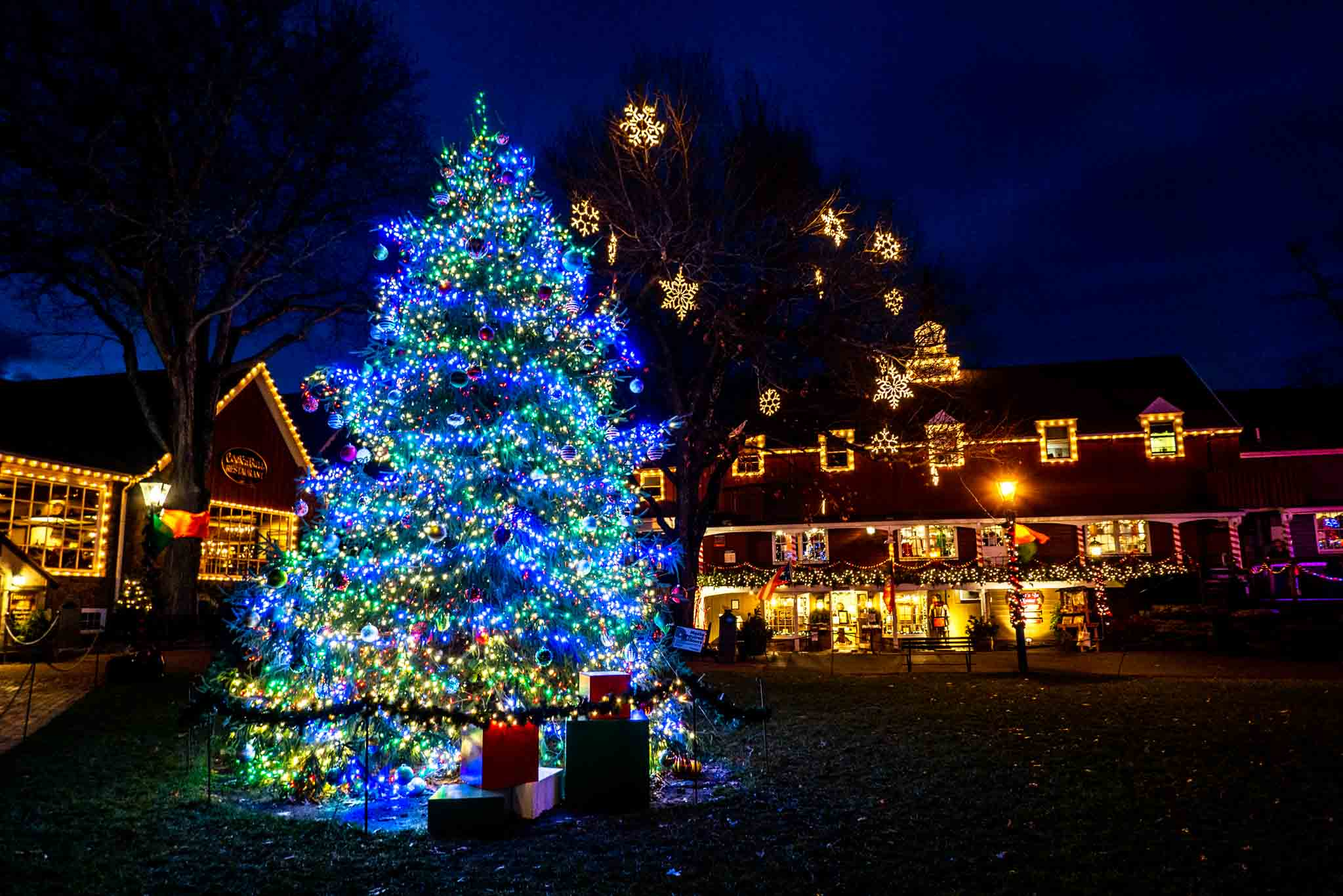 Christmas tree and building decorated with lights