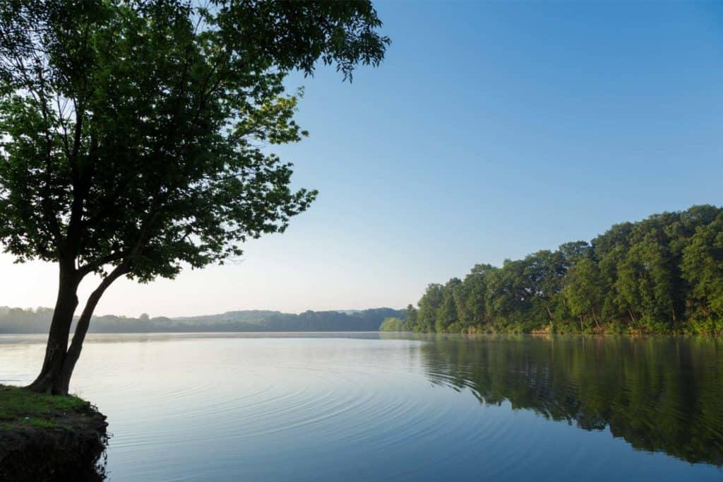 Ripples in lake