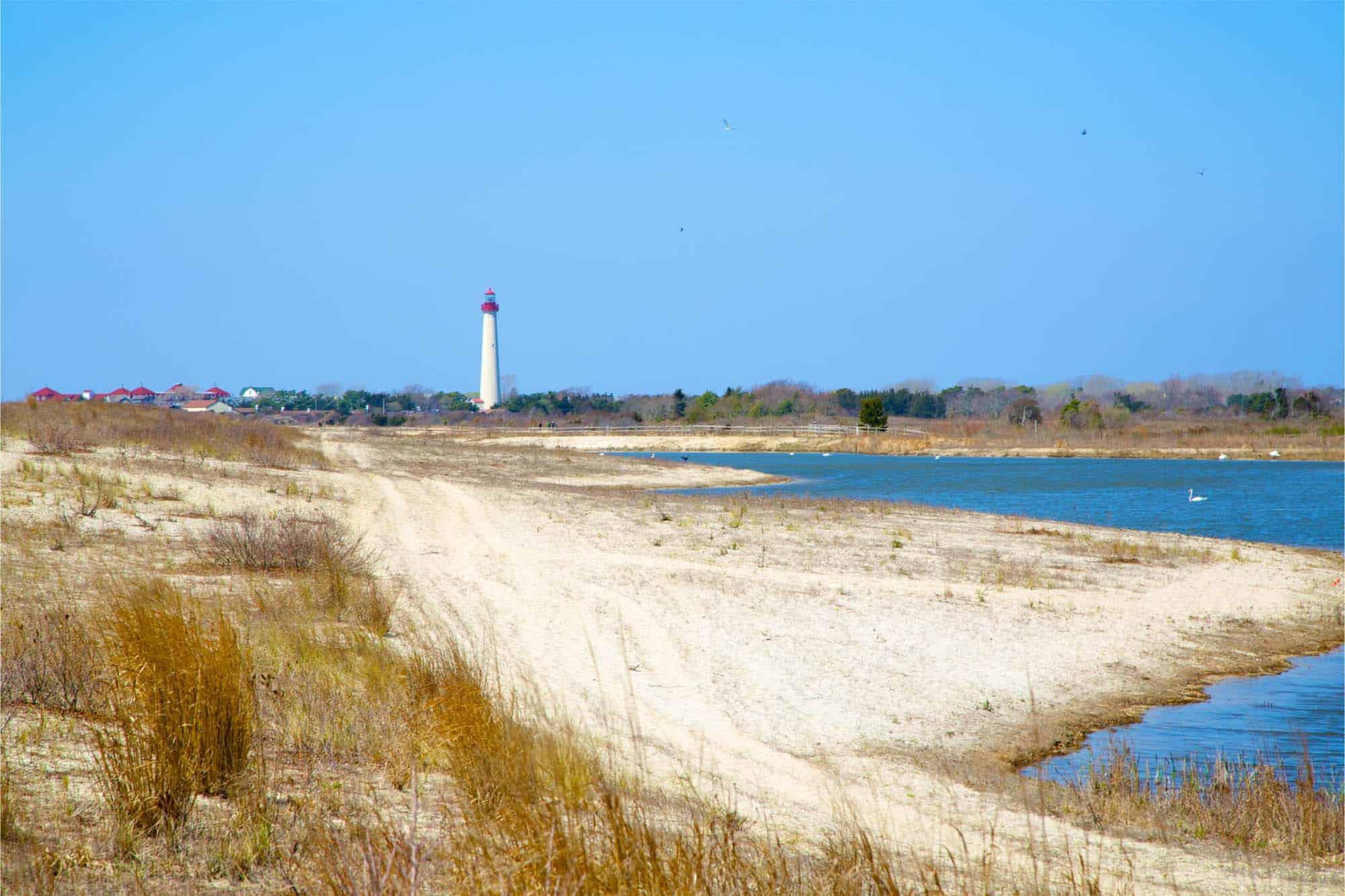 White lighthouse on shoreline