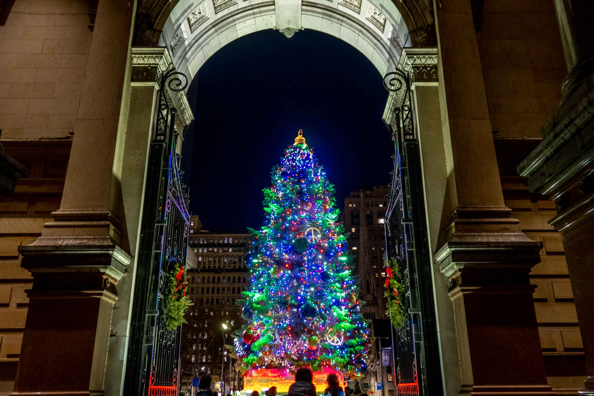Large Christmas tree covered in lights framed by an arched doorway