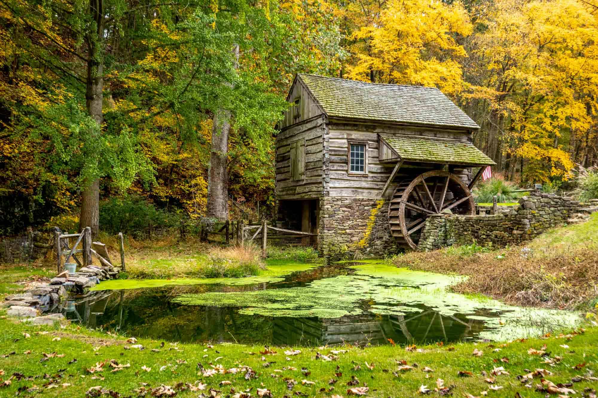 18th-century wooden mill beside a pond and a row of trees
