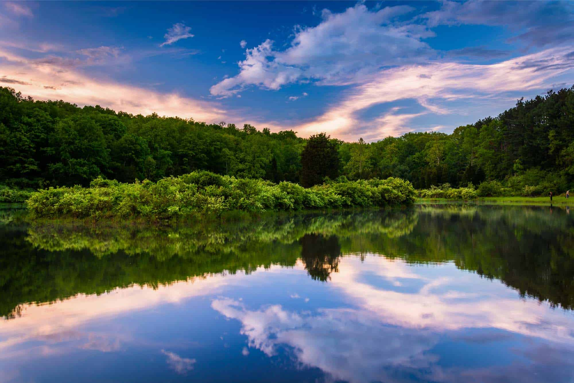 Colorful sky reflected in lake with green trees