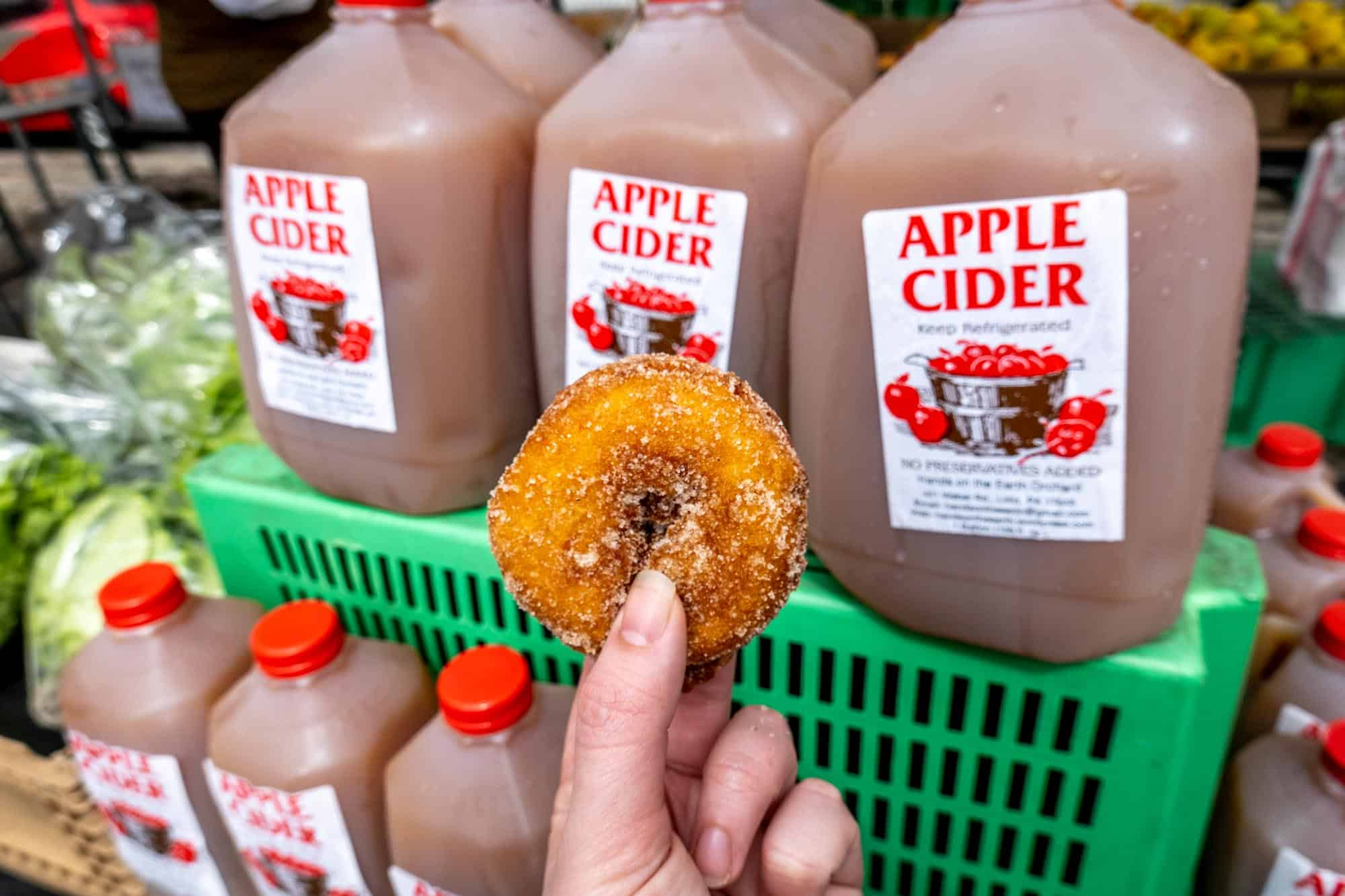 Hand holding an apple cider donut in front of gallons of apple cider