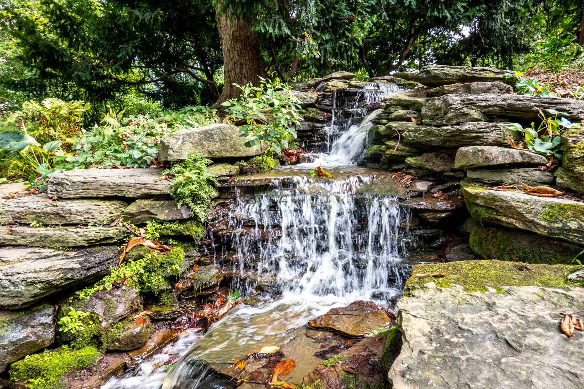 Water pouring over the rocks of a small waterfall surrounded by plants