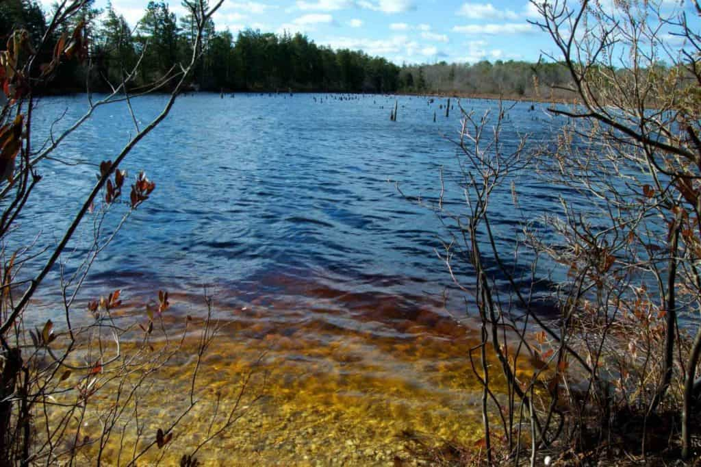 A lake in the haunted Pine Barrens of South Jersey