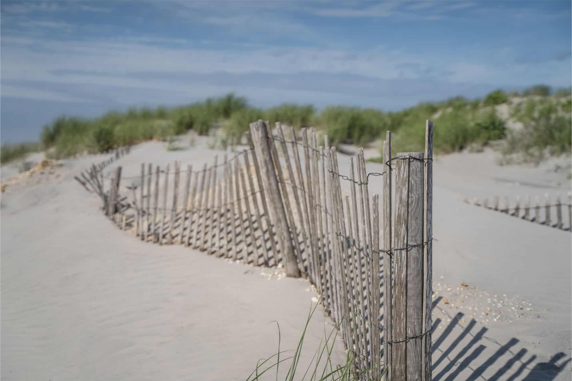 Wooden sand fence along beach with dunes
