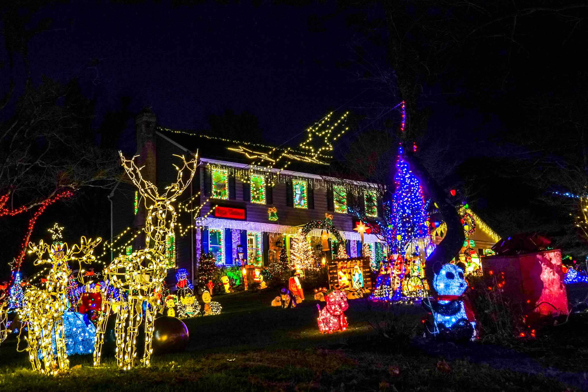 House and yard covered in figurines and lights