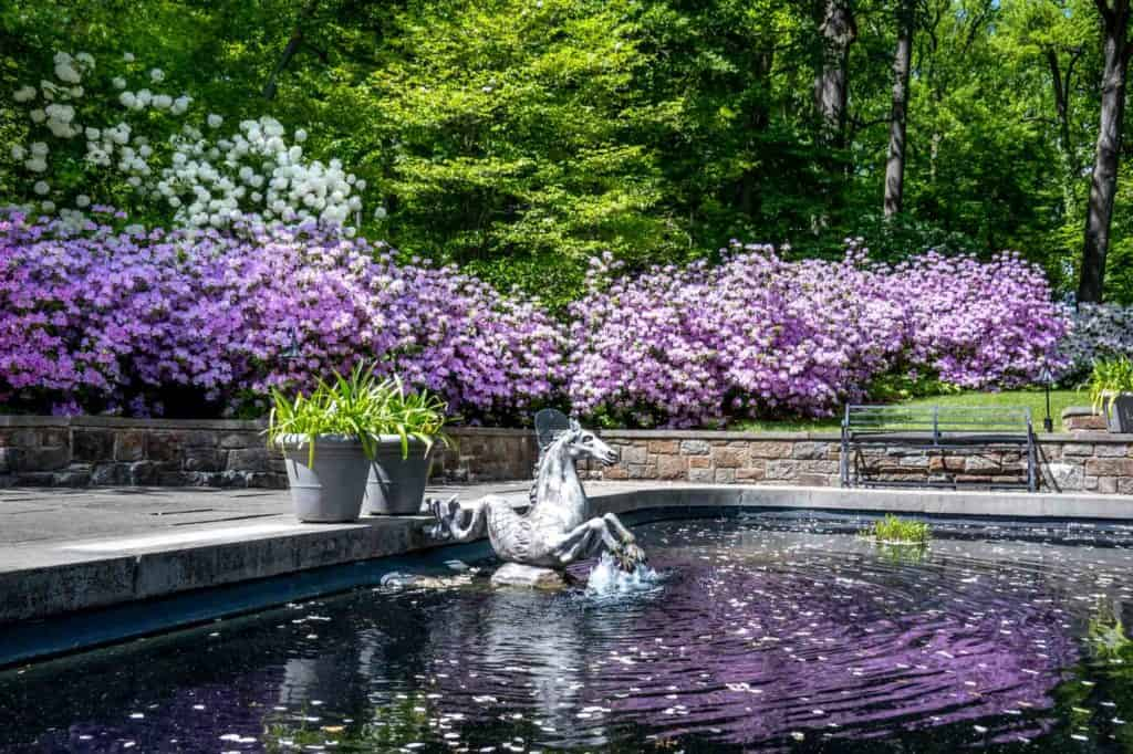 Horse sculpture in a reflecting pool surrounded by purple flowers